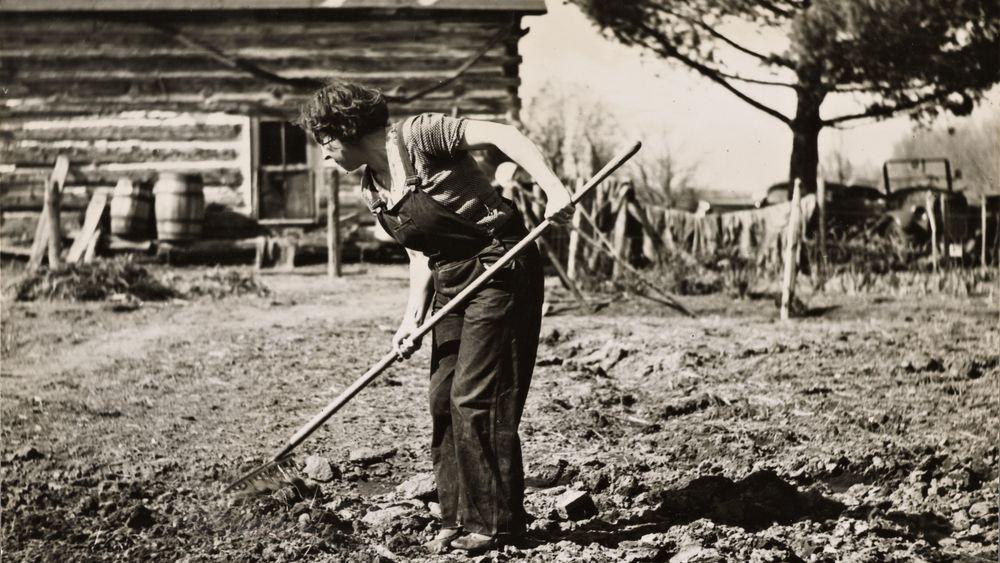 Farmer's Wife near Gibbs City, Michigan