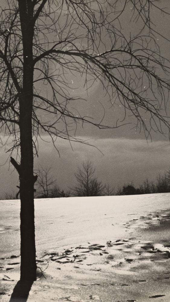 Snow Scene, New Hampshire