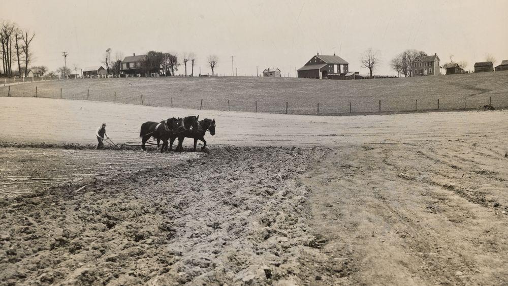 Plowing on a Maryland Farm