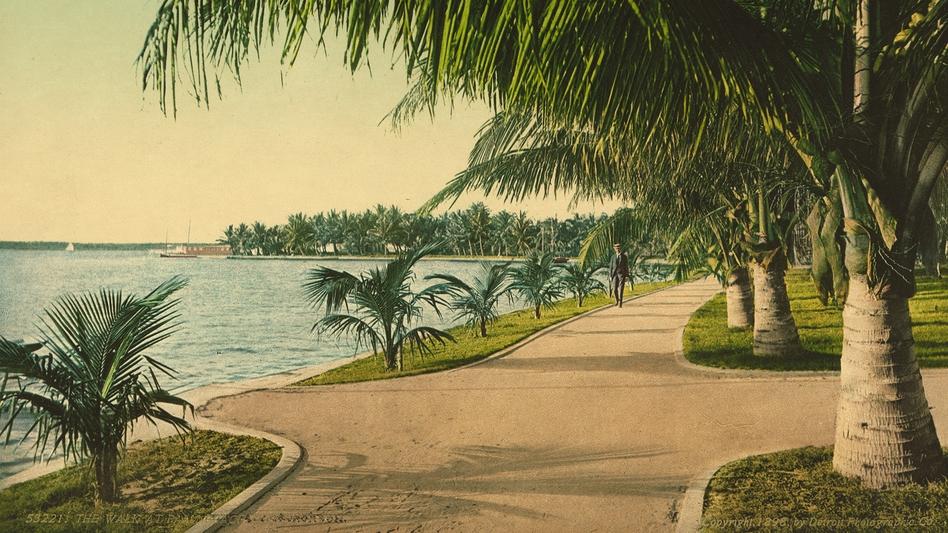 The Walk at Palm Beach