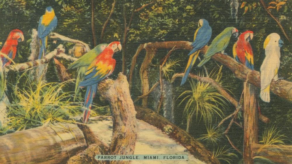 Florida Postcard II
