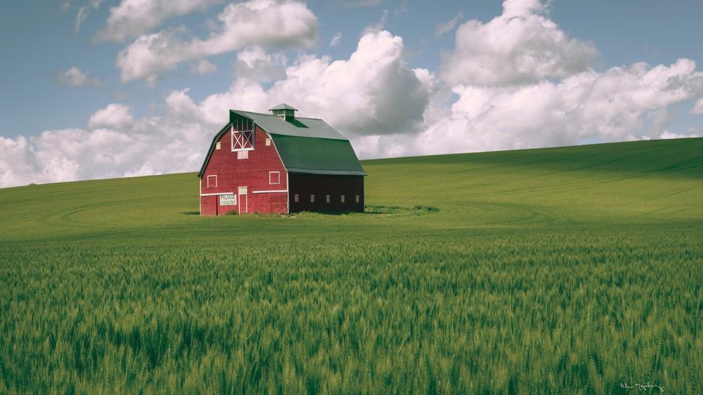 Palouse Region Red Barn I