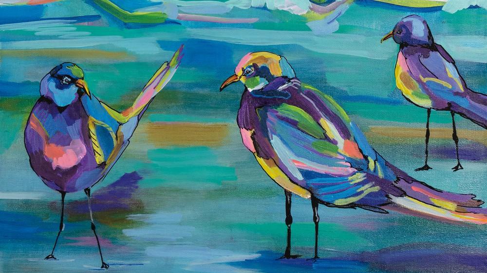 Indigo Gulls