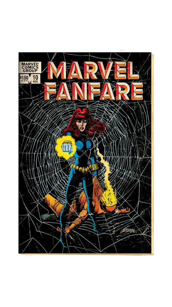 Cover Art: Black Widow in Stance