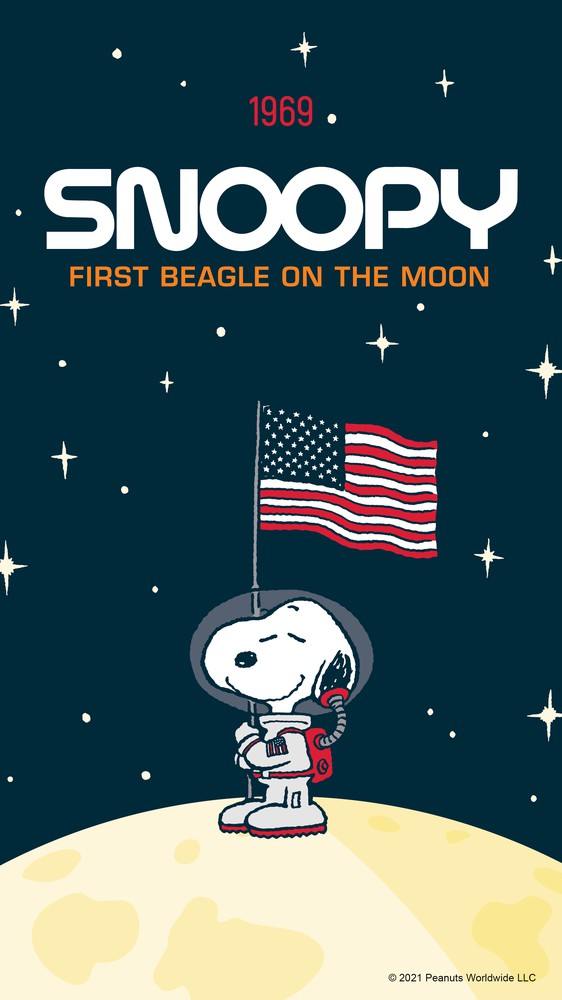 Snoopy on the Moon with Flag