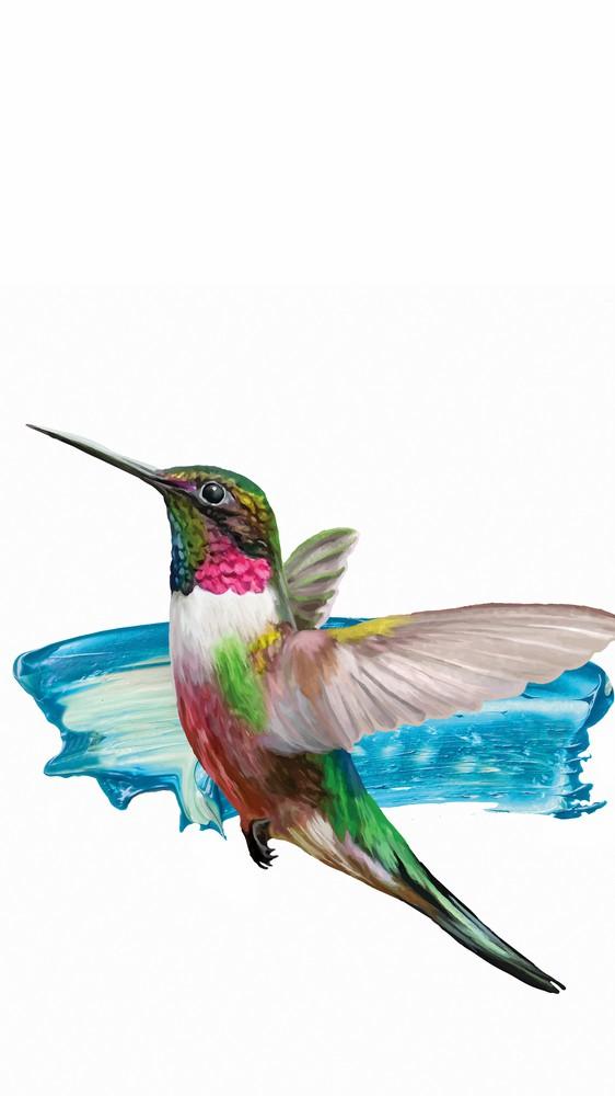 Modern Hummingbird II
