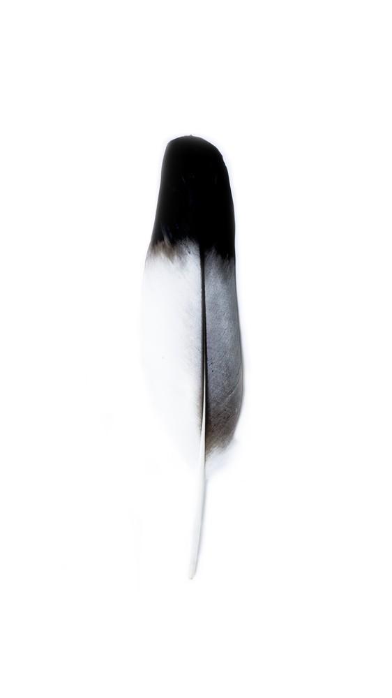 Spirit I