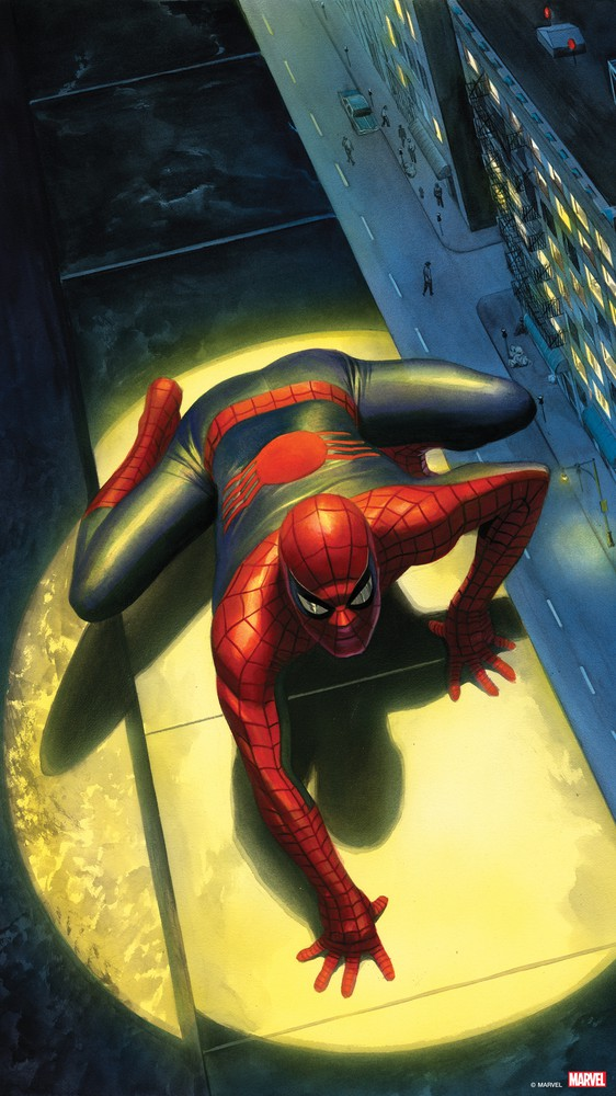 Peter Parker: The Spectacular Spider-Man #300, Variant Cover