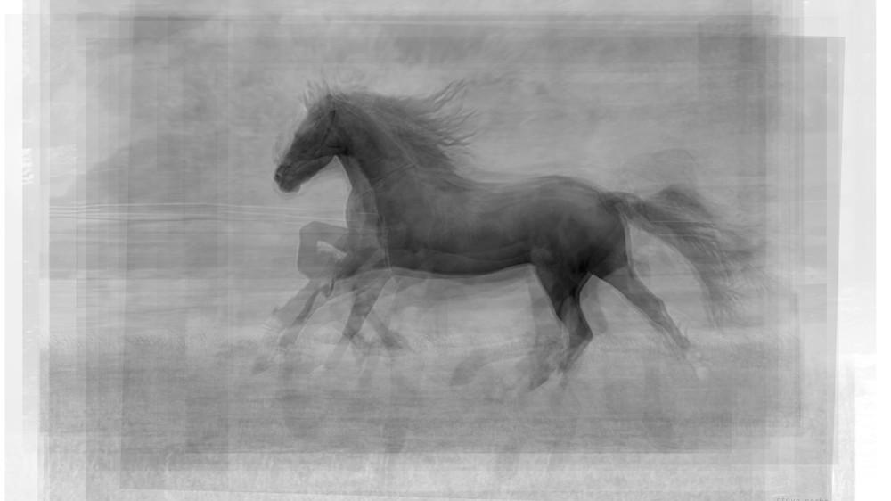 Running Horse Overlay