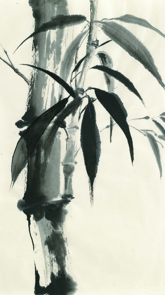 Sumi Bamboo