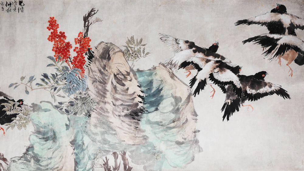 Black-Faced Pigeons