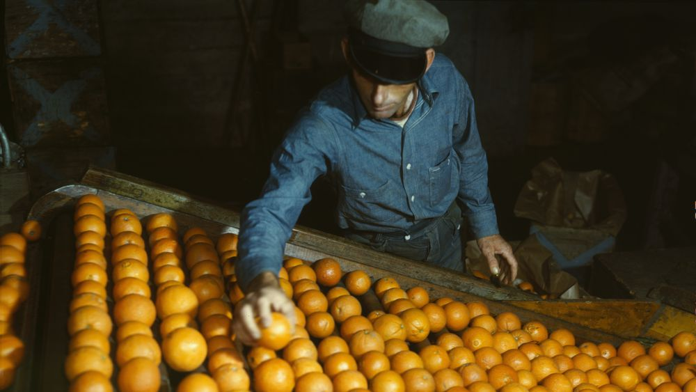 Co-op Orange Packing Plant